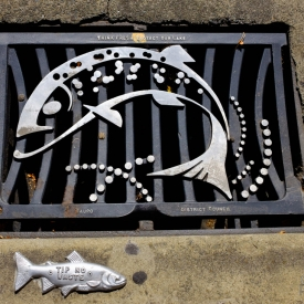 ©chris bone - taupo drain cover