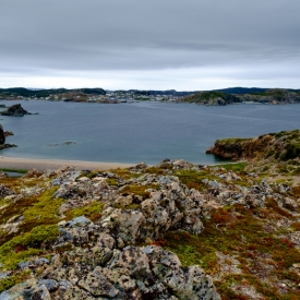©chris bone - overlooking twillingate