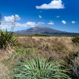 ©chris bone - tongariro national park 1