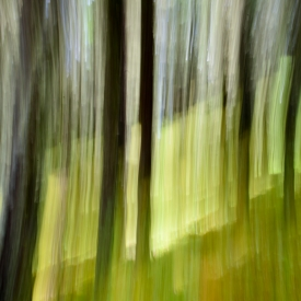 ©chris bone - impressionist 2