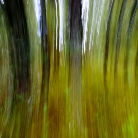 ©chris bone - impressionist 3