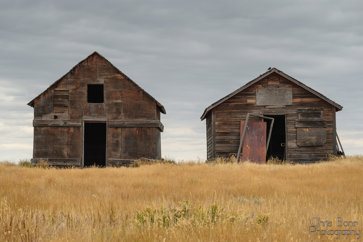 Two old barns frozen in time.