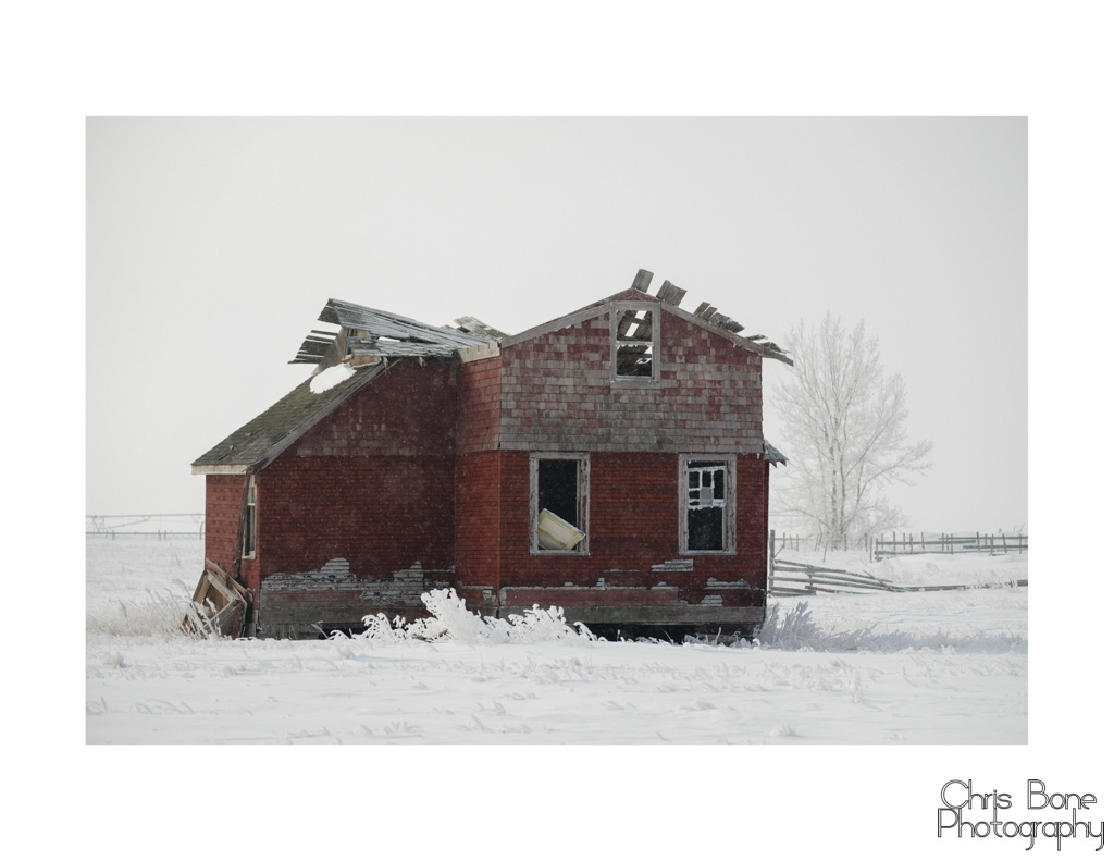 Abandoned homestead on the prairie