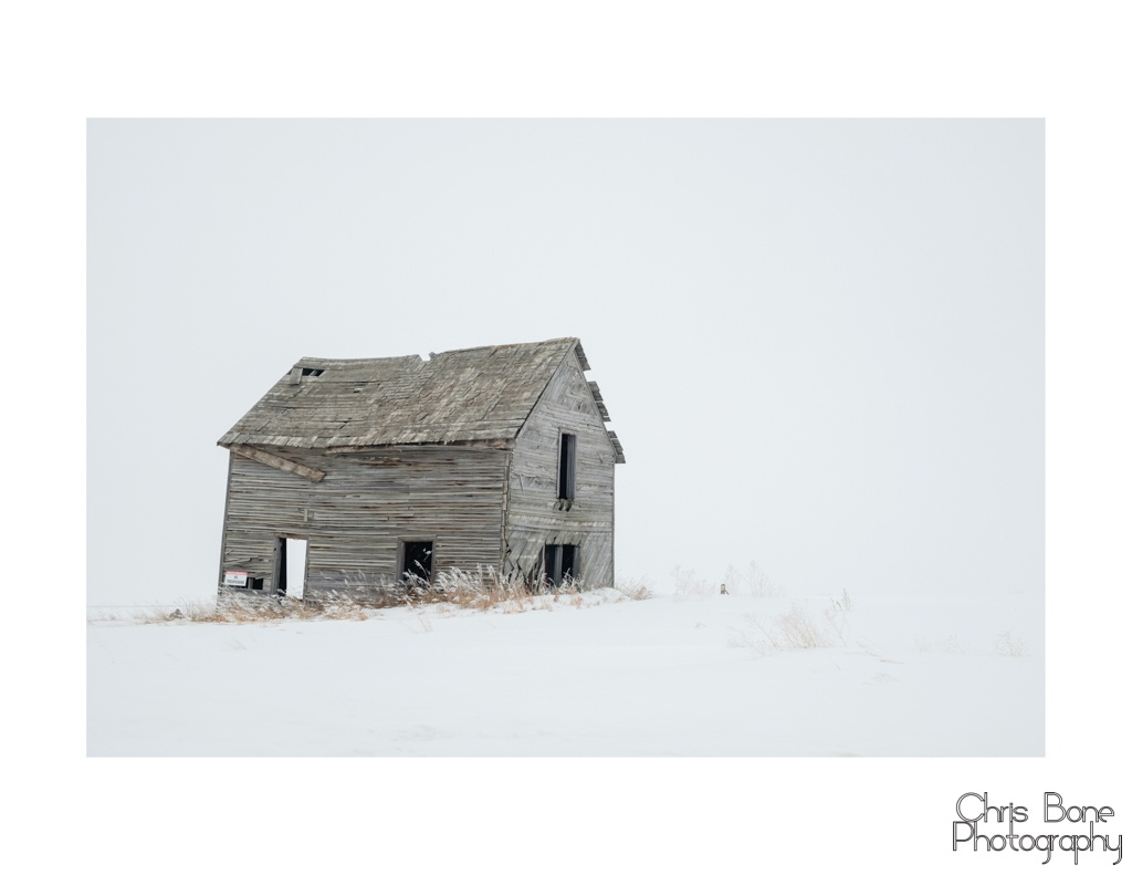 Abandoned homestead on the prairie.